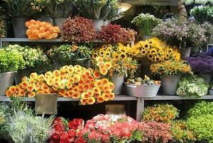 Цветы - магазины в Москве