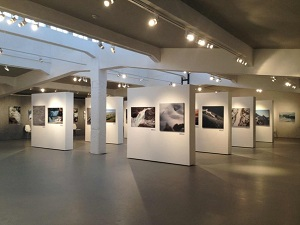 Выставки, выставочные залы и комплексы в Москве